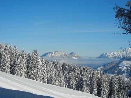 Tirol_web1