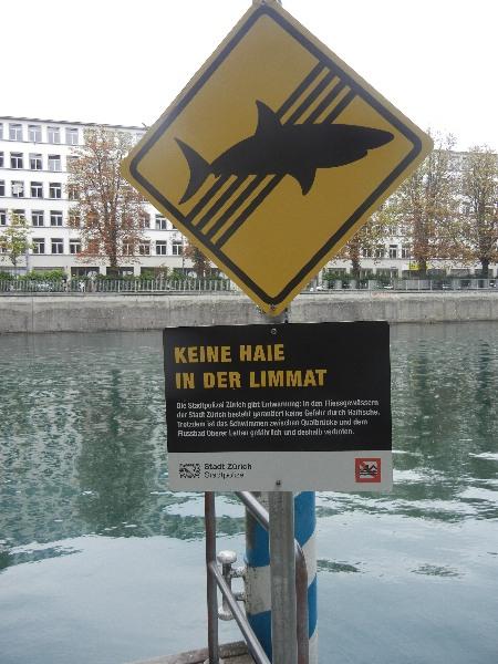 Keine Haie in der Limmat