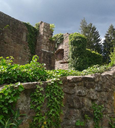 Neckarsteinach1